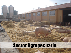 Ingenieria - sector agropecuario